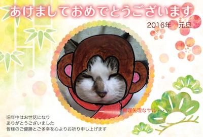 2016さる(小).jpg